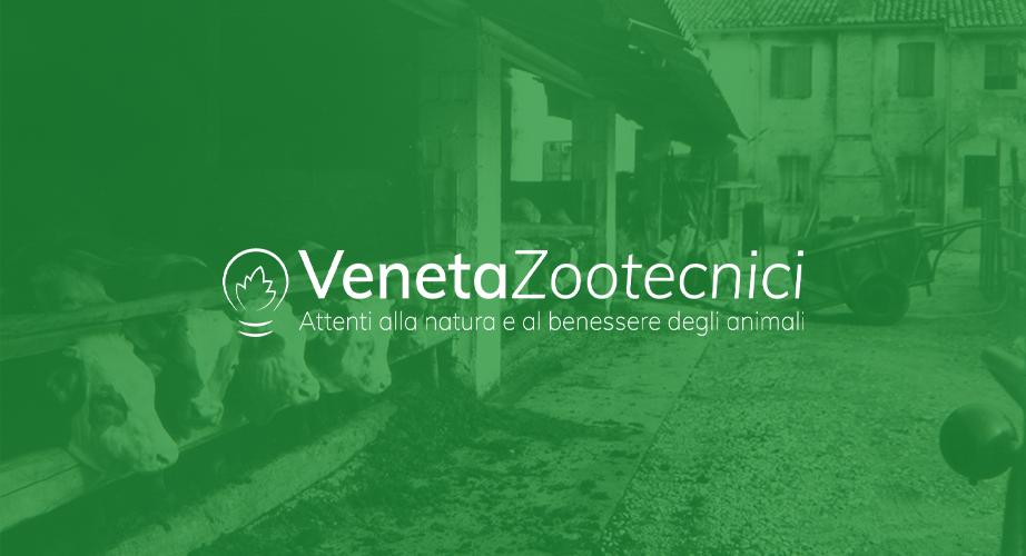 vz-logo-verde