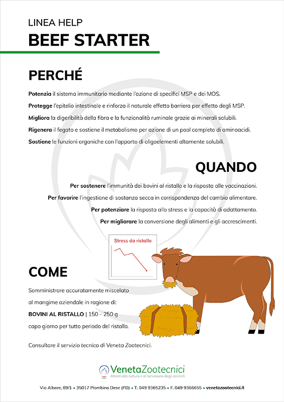 Schede informative beef starter